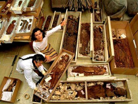 http://www.candilejas.cl/Actualizaciones-2012/08-AGOSTO/CulturaChinchorro-240812/MomiasChinchorro-2.jpg